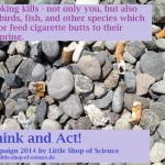 Beach_SmokingKills_LittleShopOfScience_2014